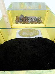 memoria 75 - Coal and Lava