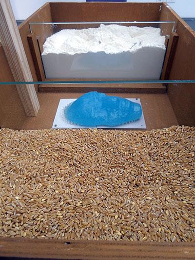 memoria 75 - Wheat and flour